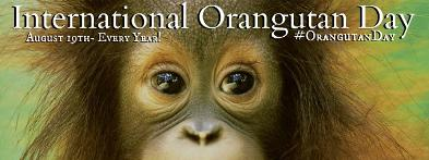 World Orangutan Day - International Orangutan Day